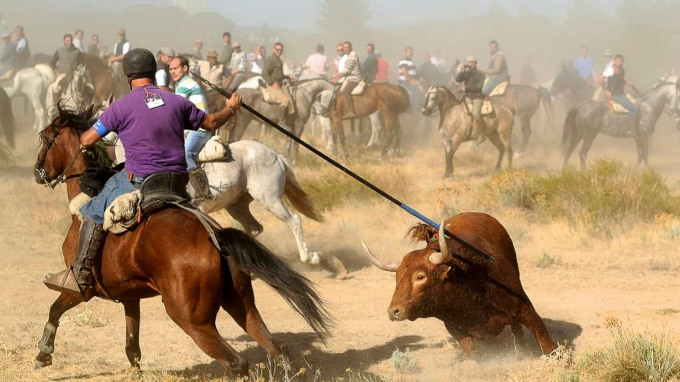 Un lancero a caballo intenta matar al animal en el torneo del Toro de...