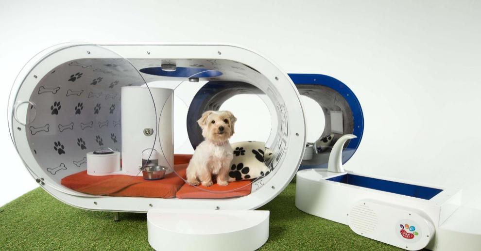 3bd7ad7e2524 La casa perruna del futuro. La Samsung Dream Doghouse es una caseta para  perros con la última ...