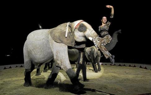 Espectáculo con animales en el Gran Circo Mundial