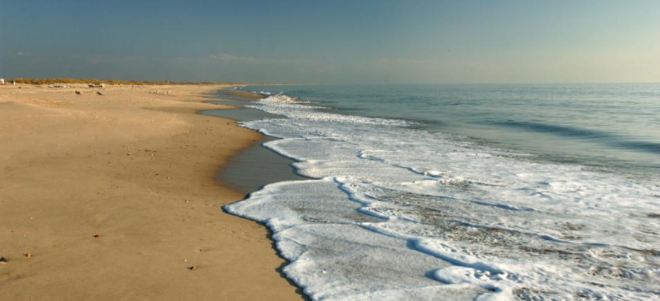 Playa de Doñana.