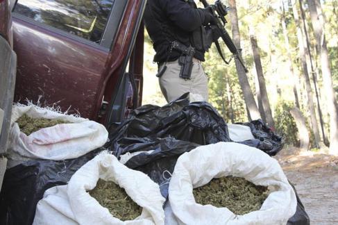 Narcos transportado sacos de marihuana en México.