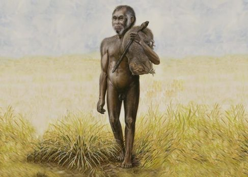 Recreación artística de un Homo floresiensis.
