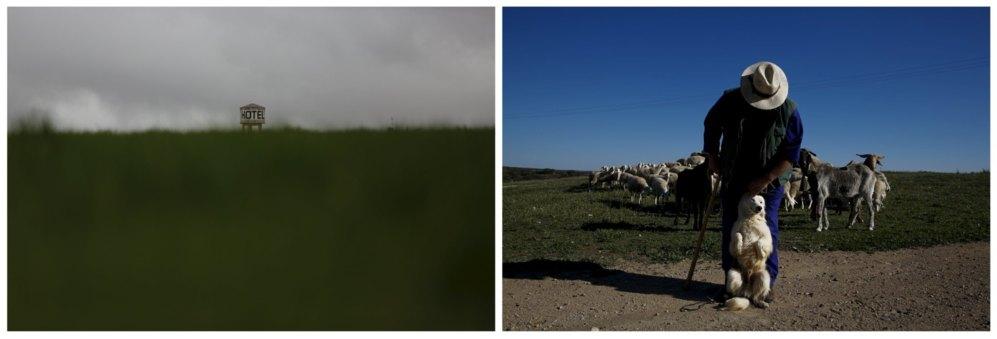 Un hotel sobre el horizonte en un campo de Dosbarrios, junto a la carretera de Andalucía. A la derecha, el pastor Ángel Gutiérrez con su perro Paco, conduce a sus ovejas junto al embalse de Peñarroya en Argamasilla de Allba.