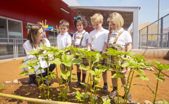 Intur crea \'Crec3r\', un proyecto educativo sobre agricultura y medio ...
