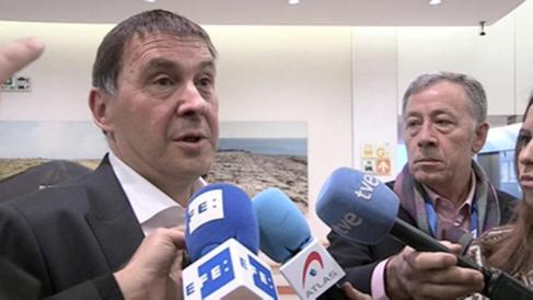 Arnaldo Otegio este miércoles en el Parlamento Europeo.