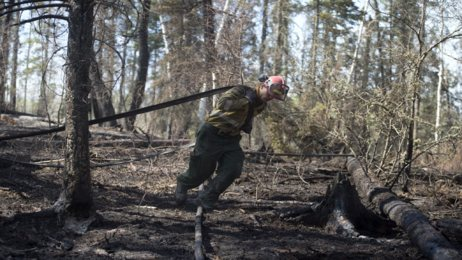 Zona quemada en Fort McMurray (Alberta), Canadá.