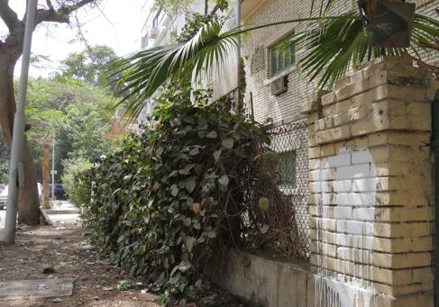 Exterior del edificio de El Cairo adquirido para albergar el Instituto...