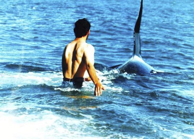 'Beto' Bubas entra en el agua junto a una orca en la...