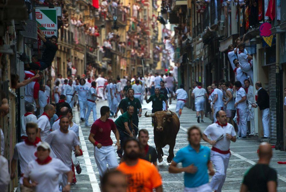 Los pastores intentan llevar a un toro aislado hacia la Plaza