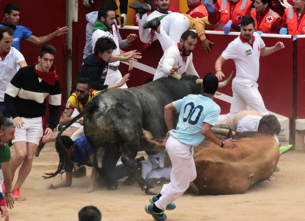 La manada ha protagonizado una escena peligrosa en el interior de la...