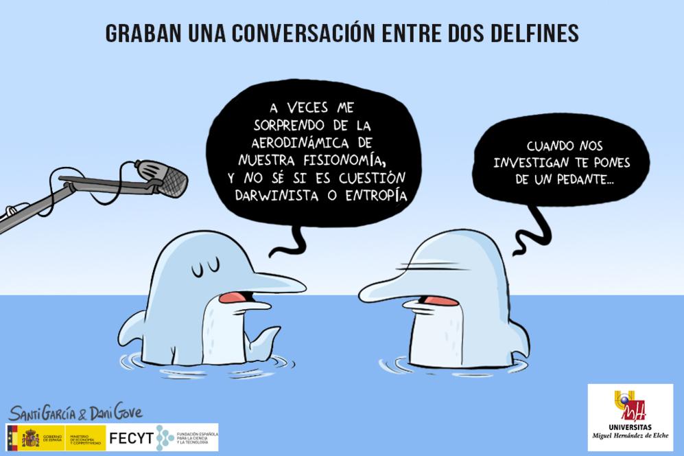 """Por primera vez, y nos permitimos la indiscreta licencia científica, consiguen grabar la conversación entre dos delfines, Yasha y Yana. Los investigadores del Karadag Nature Reserve de Feodosia (Rusia) logran captar a dos delfines """"nariz de botella"""" intercambiando palabras, diferenciadas por sus frecuencias y campo espectral. Que los delfines se comunican de forma inteligente no es nuevo, se publicó en 2011 en Biology Letters que los delfines hacen vibrar su tejido conectivo en la frecuencia que quieren para emitir ciertos sonidos, similar a la forma con la que los humanos hacemos sonido con las cuerdas vocales para hablar. Ahora tenemos un mensaje que descodificar, cual código Enigma. Algún día podremos entender su lenguaje y comunicarnos con ellos. ¿Para cuándo tendremos colegios trilingües y cuatrilingües que incorporen el idioma delfín?"""