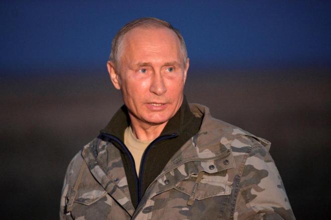 El presidente ruso, en la reserva de caballos de Przewalski.