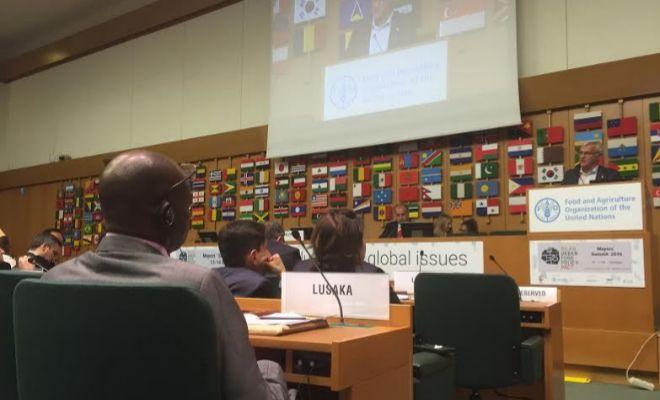 Ribó interviene ante los representantes de la FAO en Roma.