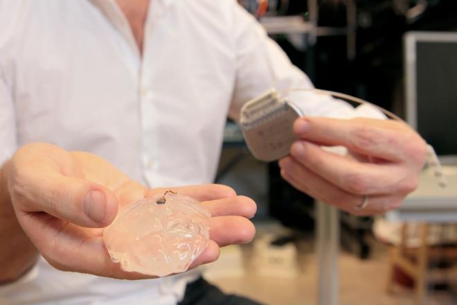 La mano de Grégoire Courtine sostiene el chip formado por los electrodos sobre un modelo de silicona del cerebro de un primate.