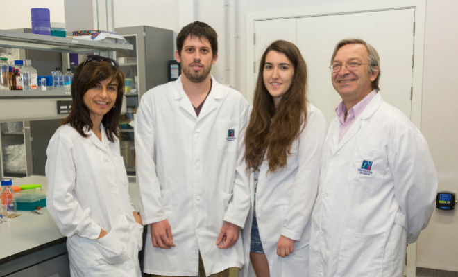 Los investigadores de la Universitat Jaume I de Castellón.
