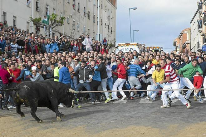 Cientos de jóvenes se agolpan en torno a 'Cortador', el 'Toro Enmaromado' de 2013.