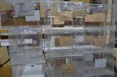 Urnas preparadas para las elecciones generales del 20 de diciembre de...
