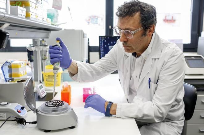 El doctor Luis Paz-Ares trabajando en el laboratorio del Hospital 12 de Octubre.