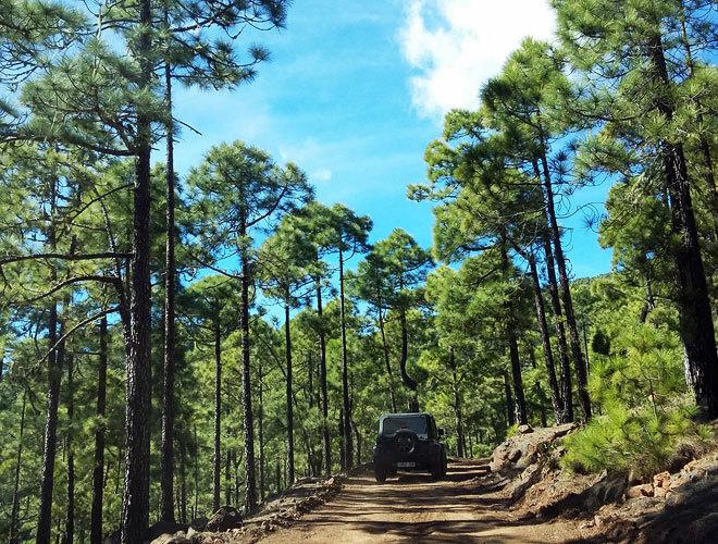 Tenerife a tu aire y en tu propio jeep viajes el mundo - El baul tenerife ...