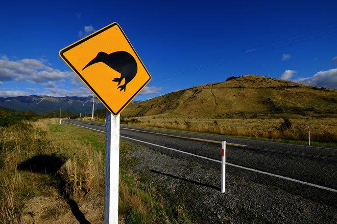 A Rotorua y otros enclaves de Nueva Zelanda se puede llegar en autostop.