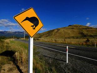 Nueva Zelanda <br>en autostop