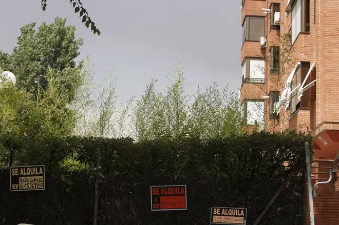 Alquilar un piso es 188 euros m s barato que hace 10 a os for Alquilar un piso