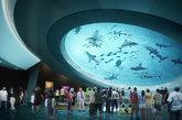 Abrirá sus puertas el próximo 8 de mayo en el Museum Park de Miami....