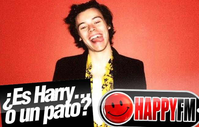 La Divertida Anécdota de Harry Styles y su Padrastro ...