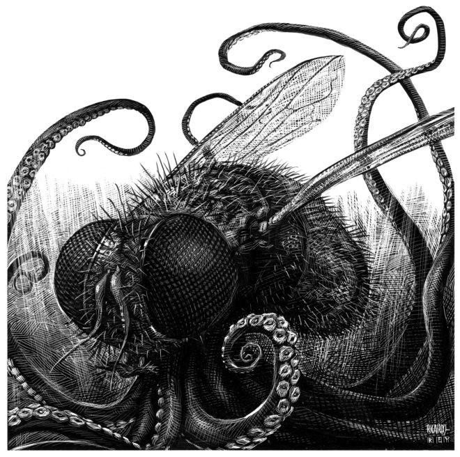 La voracidad de las moscas