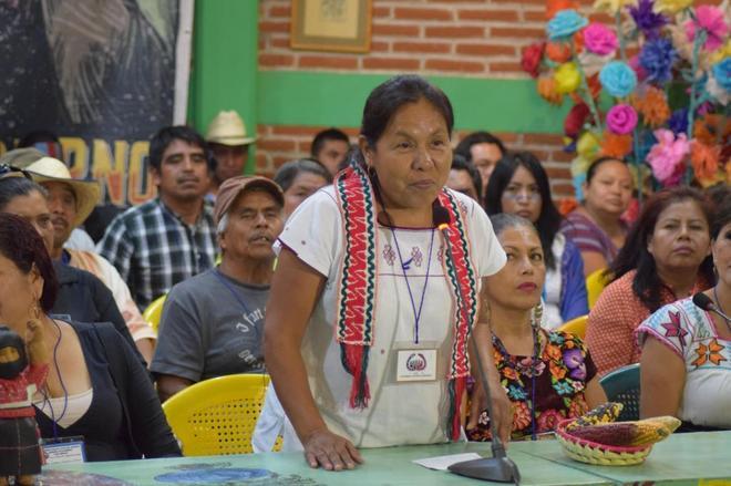 La médica tradicional de la etnia nahua, María de Jesús Patricio, durante su elección.