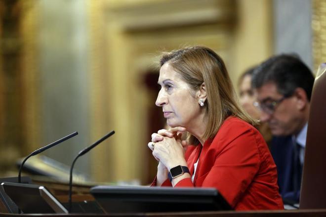 La presidenta del Congreso, Ana Pastor, en un pleno.