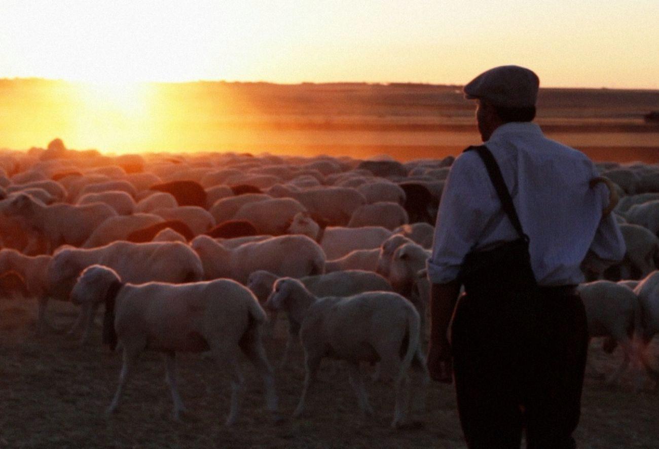 Fotograma de la película 'El Pastor'.