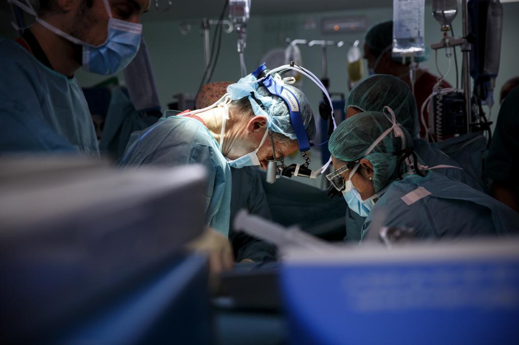 Holanda se rebela contra la donación de órganos por ley   Salud