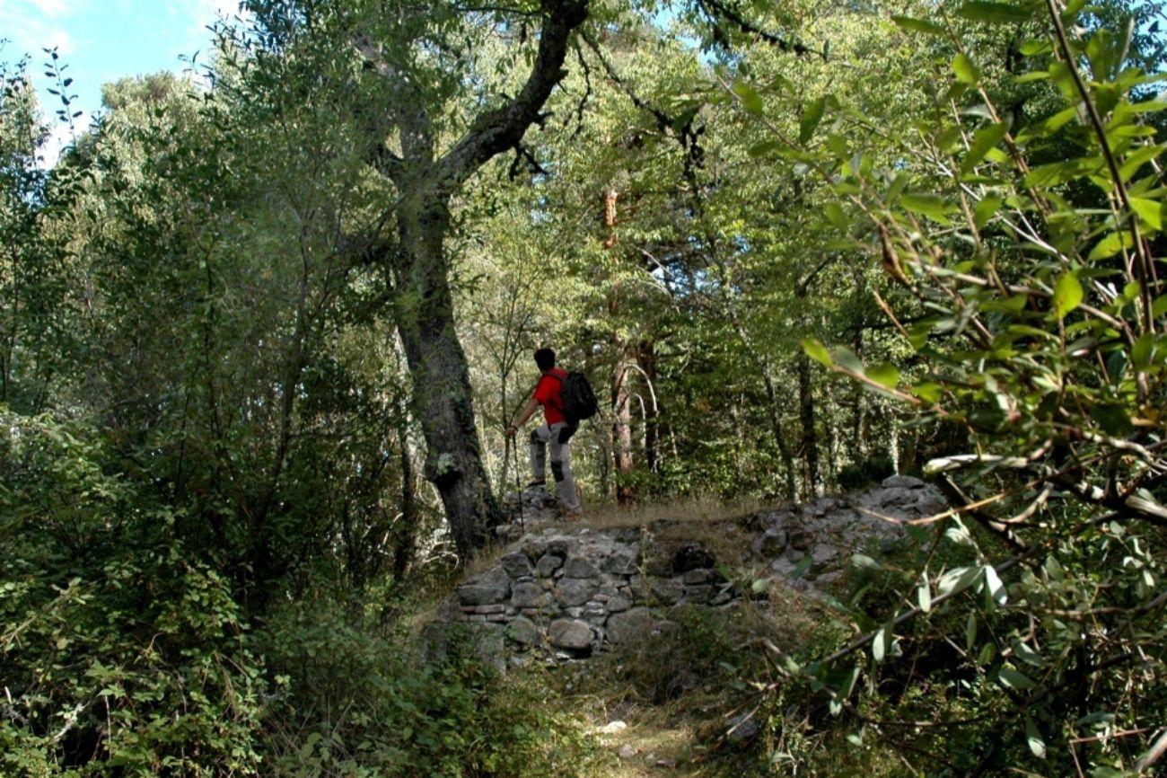 Sobre los restos de la Casa del Cebo, en el interior de los pinares de...