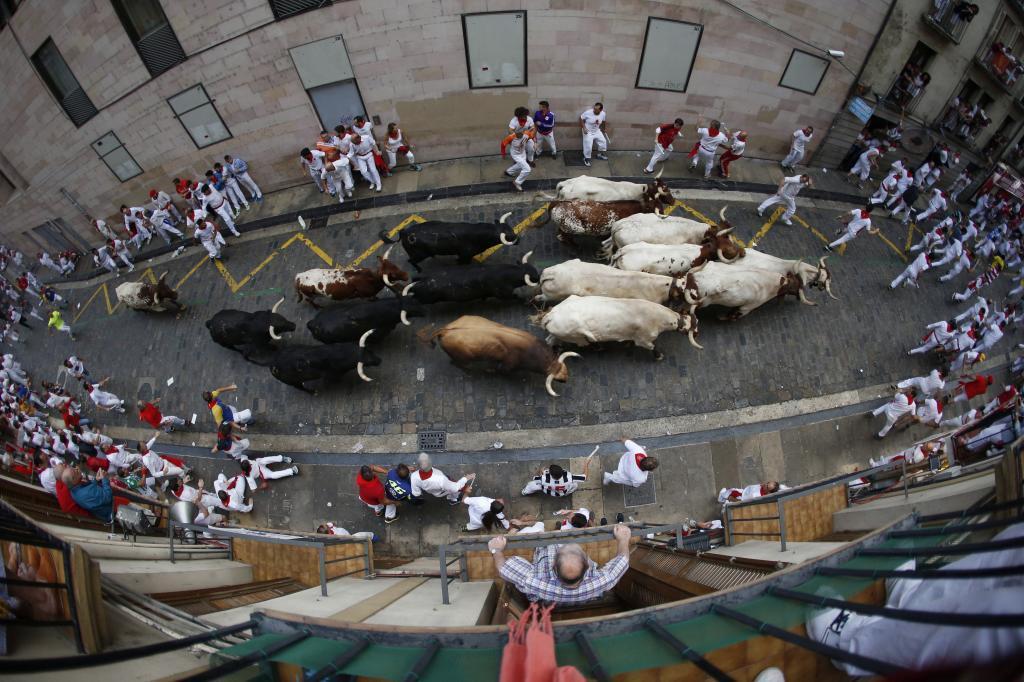 Los toros de la debutante ganadería de Puerto de San Lorenzo, a su...