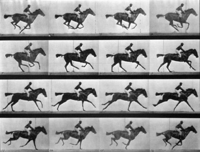 Fotografías de 'El caballo en movimiento'.