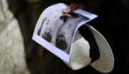 Un hombre sostiene con sus manos un sombrero y una fotografía del...