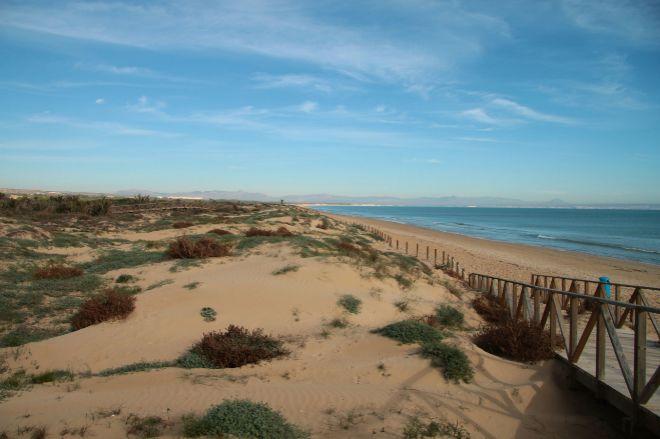 Una de las playas de Guardamar.
