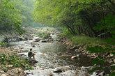 El río Navelgas, junto al Yerbo y al Bárcena, arrastran aún hoy...