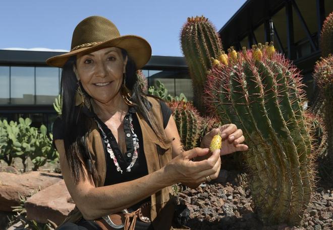 El jard n de las plantas sin agua madrid home el mundo for Jardin cactus madrid