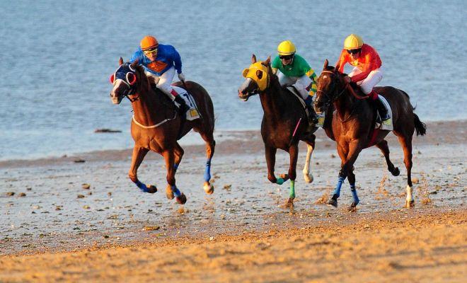 Sociedad de carreras de caballos de Sanlúcar y Delegación Municipal...