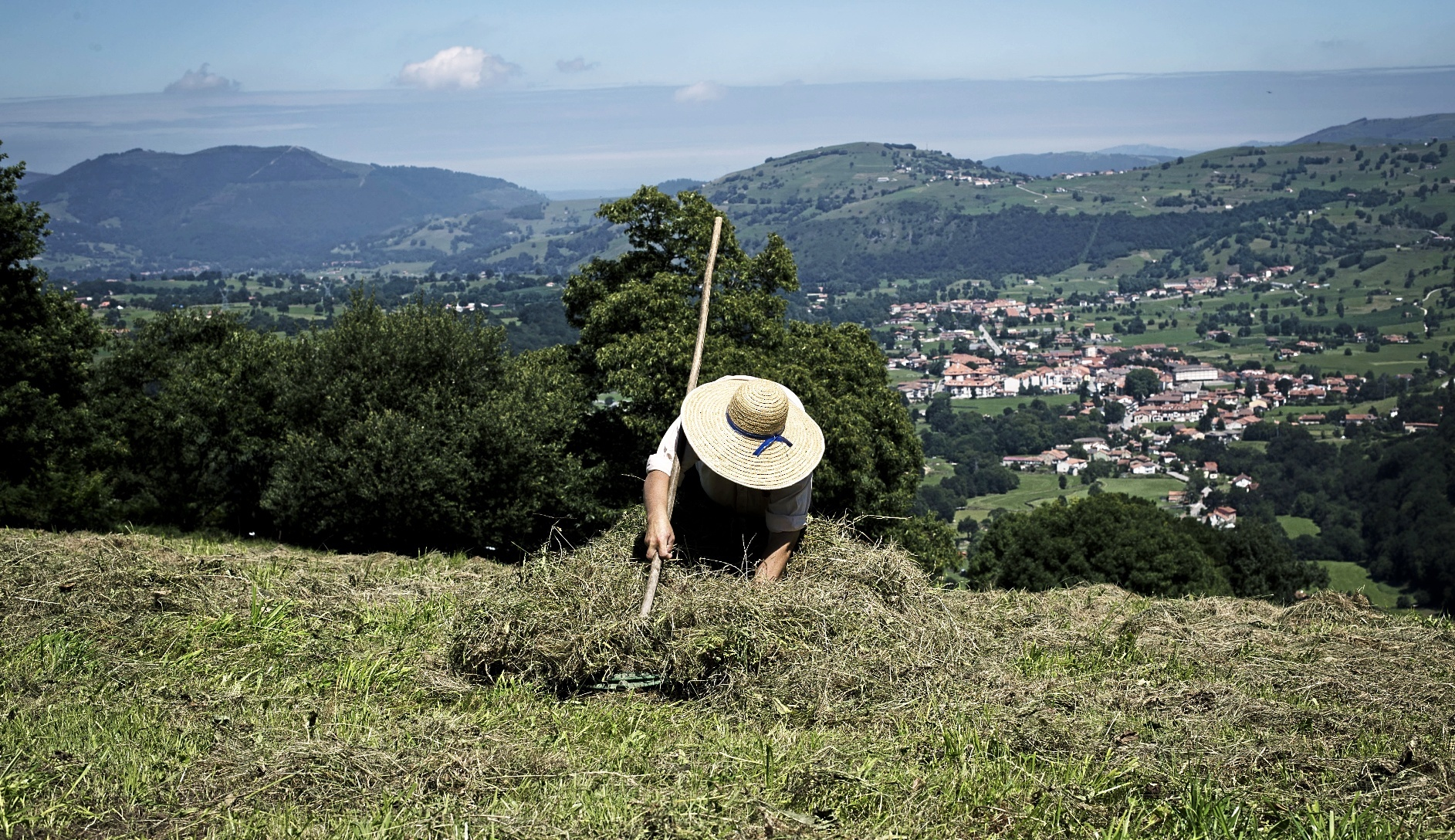 una mujer recoge la hierba en el puerto de La Braguía, en la...