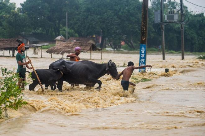 Nepal sufre fuertes precipitaciones, que persistirán hasta el lunes.
