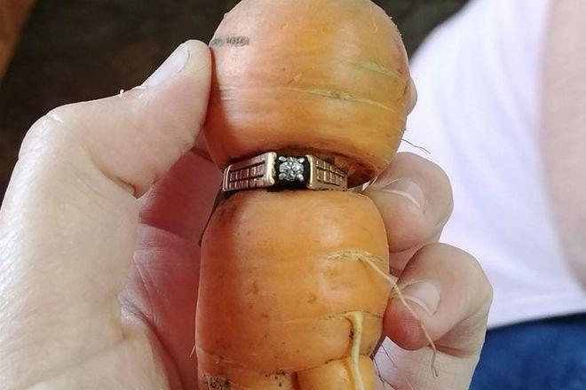 Así encontró esta anciana su anillo de compromiso, perdido en 2004.