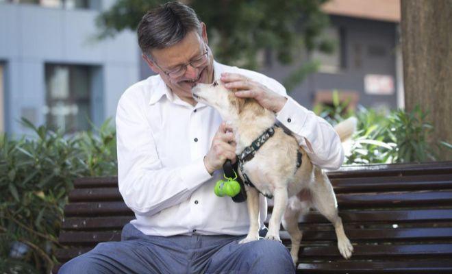 El presidente de la Generalitat, Ximo Puig, en una entrevista, desvela su pasión por los perros.