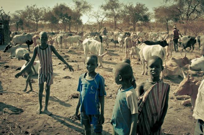 Unos niños de la etnia nuer, junto a su rebaño de vacas, en Sudán del Sur.