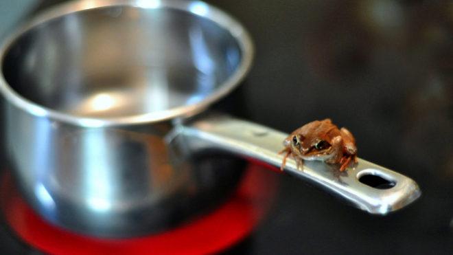 'Boil the Frog', la web que crea las listas de Spotify más curiosas