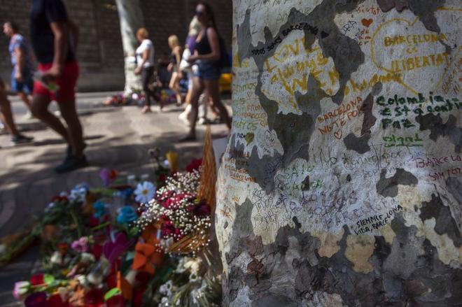 Detienen en Vinaroz a un presunto terrorista relacionado con los atentados de Barcelona y Cambrils