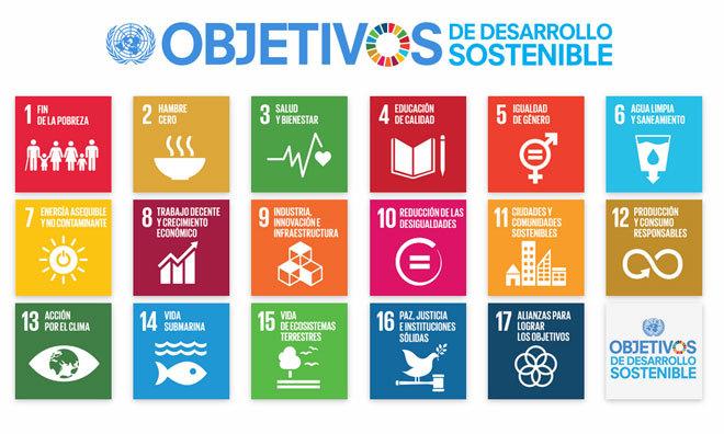 Qué hacen las empresas por el desarrollo sostenible?   Zen   EL MUNDO