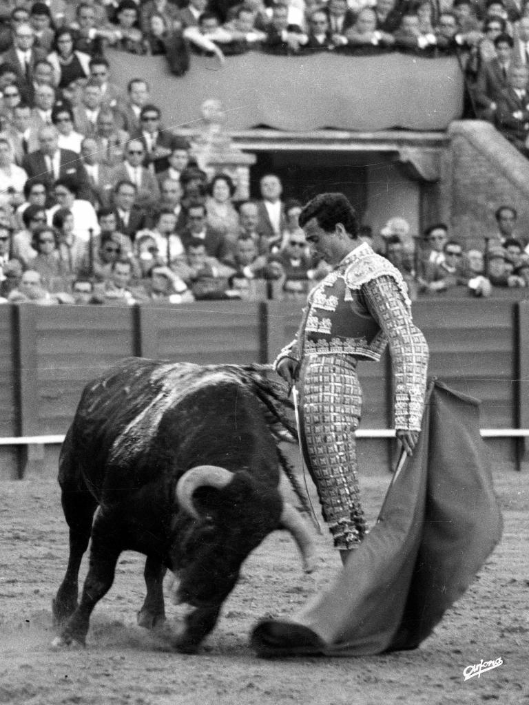 Espectacular pase del desprecio de Manolo Cortés en la Maestranza